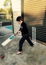 cheer cricket scores