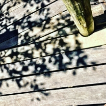 shadows-on-the-deck