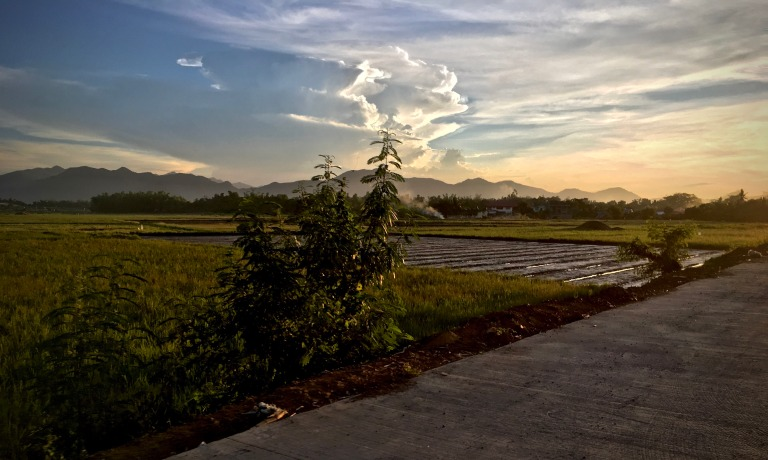 just before sunset over the newly ploughed rice paddies by Melinda J. Irvine