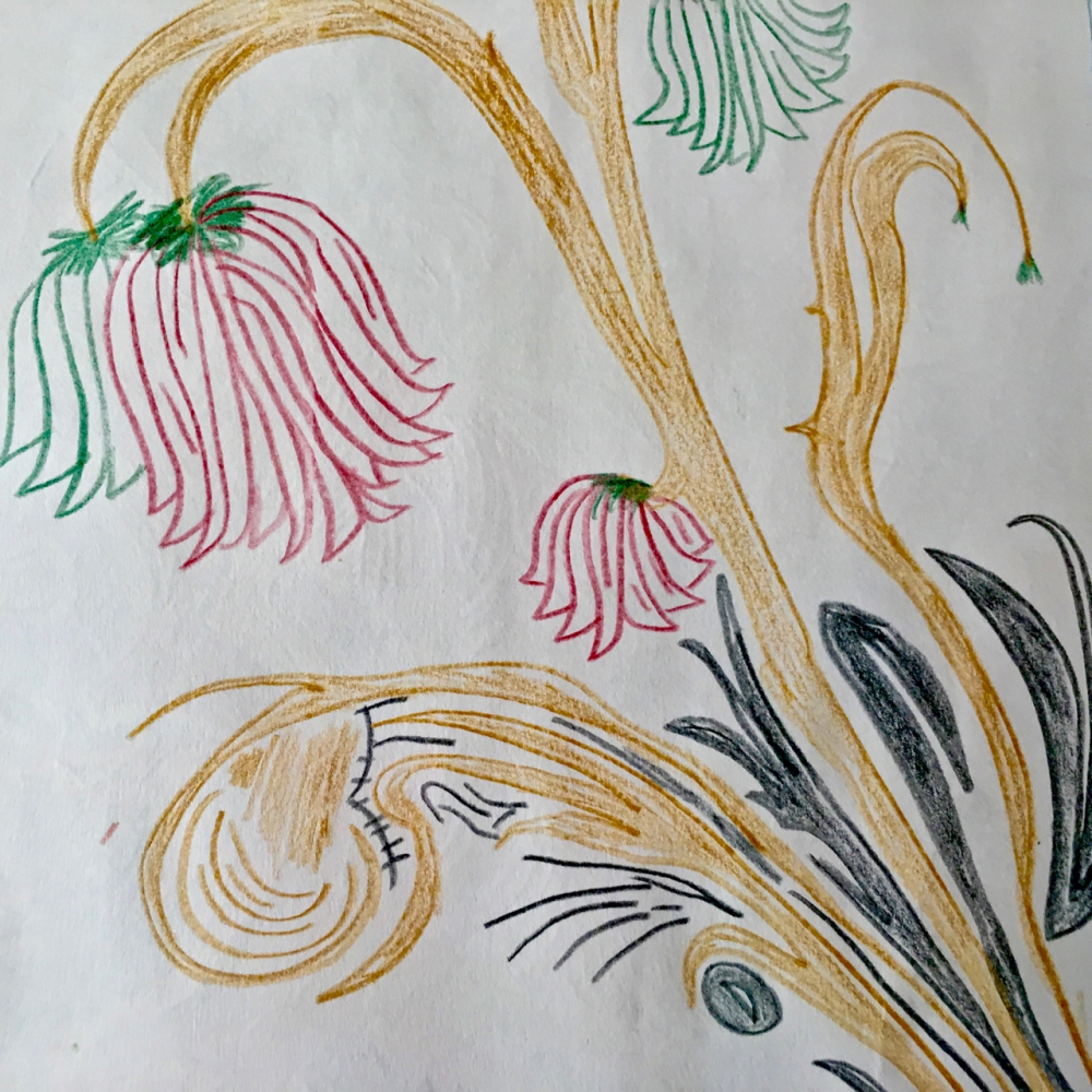hand drawn fictious flowers